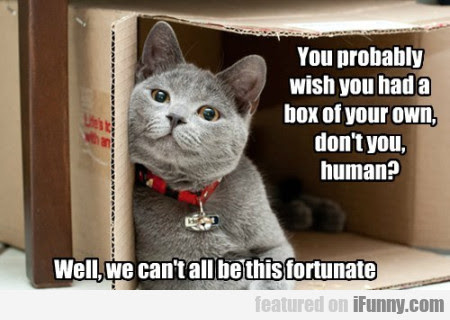 You Probably Wish You Had A Box Of Your Own...