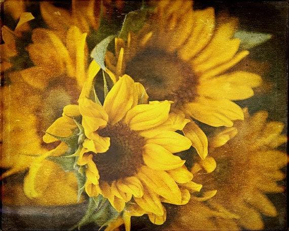 Sunflower Designed Kitchen Items House Furniture