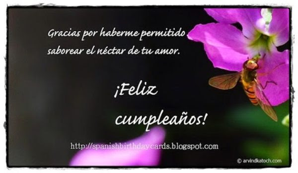 Birthday Wishes In Spanish Wishes Greetings Pictures Wish Guy