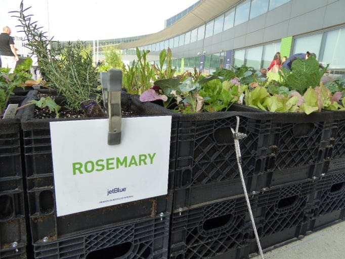Helpful signs tell garden visitors what's growing in