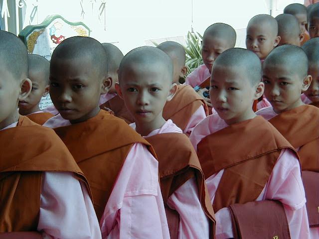 Fledgling nuns, Myanmar