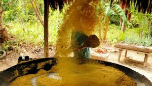 Prêmio Equatorial busca projetos de desenvolvimento sustentável com soluções inovadoras