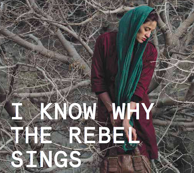 I Know Why The Rebel Sings