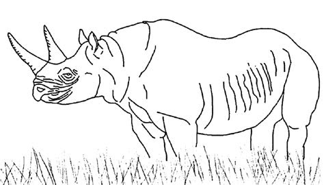 african savanna coloring pages bestofcoloringcom