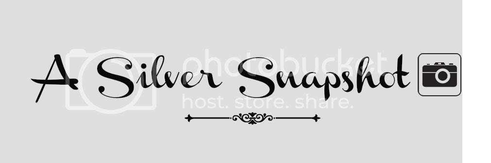A Silver Snapshot