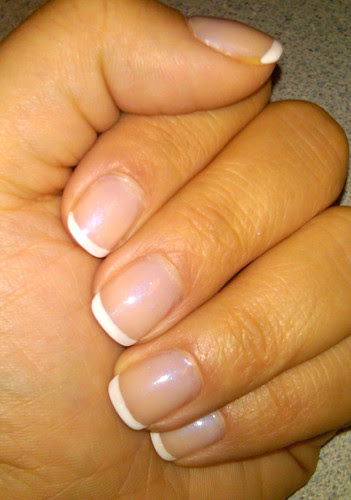Shellac_day8