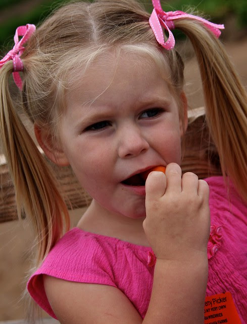 Strawberry Pickin' April 2012 46