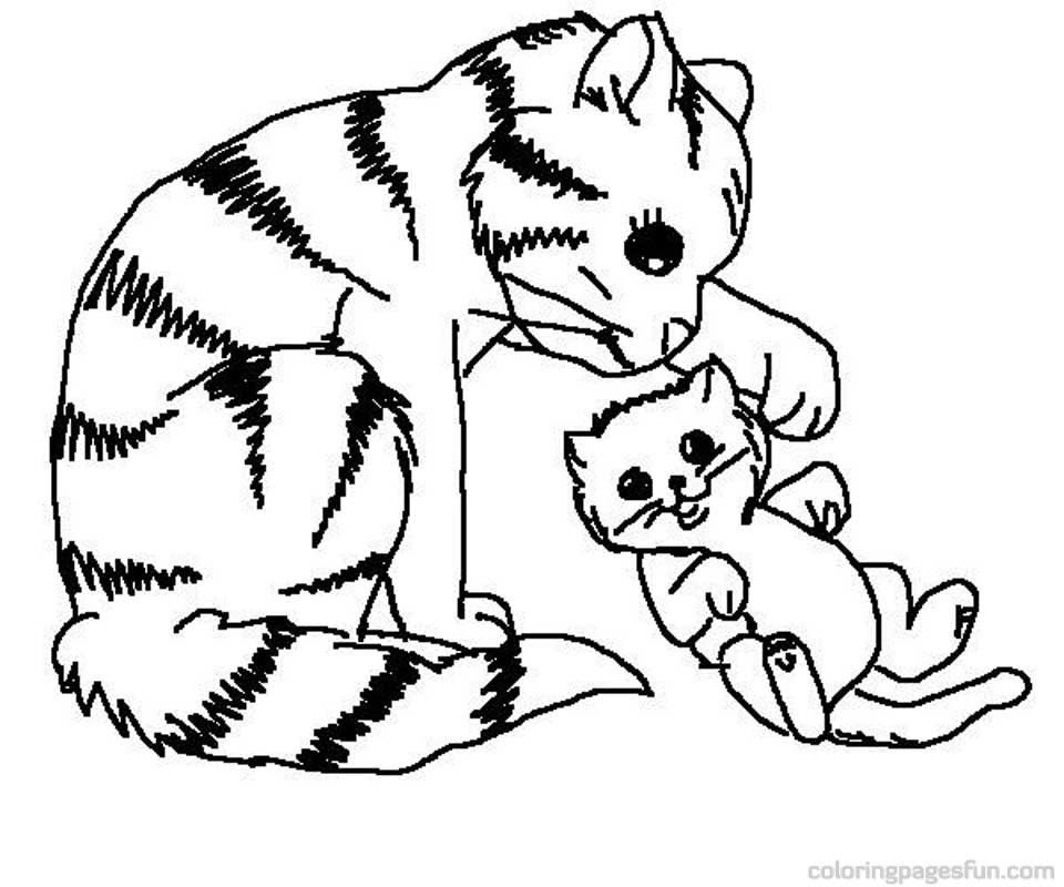 Kitten Cat Coloring Pages For Kids Drawing With Crayons