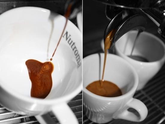 espresso robusta