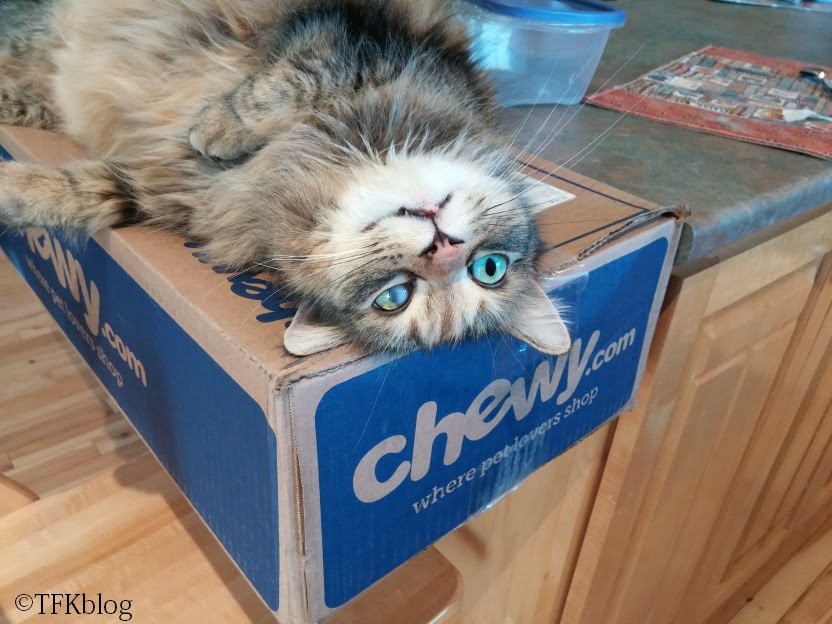 Fleurp LOVES boxes from Chewy.com