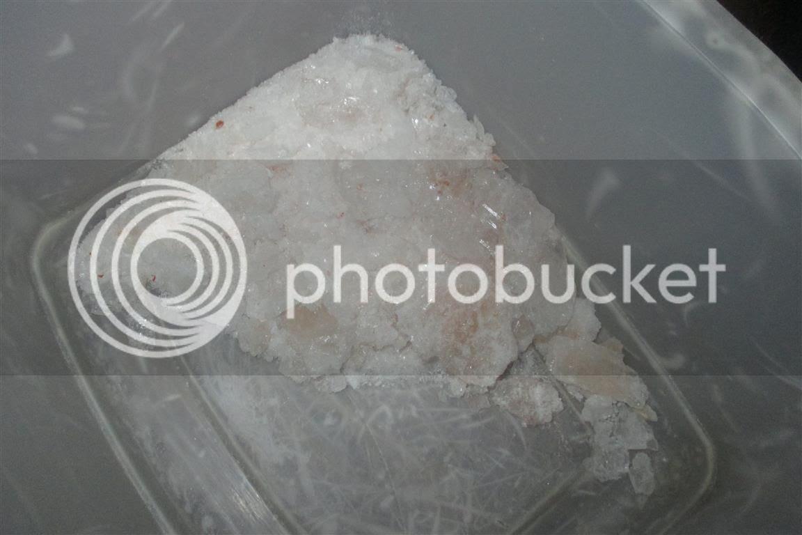 photo IMG_1021Medium_zps7199f5c0.jpg