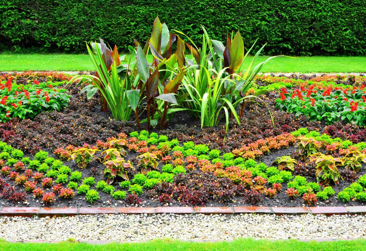 Rabaty Kwiatowe W Ogrodzie Ciekawe Pomysły Kwietnych Wzorów Z