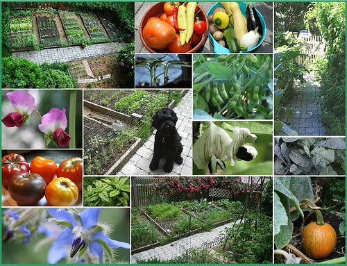 2007 garden