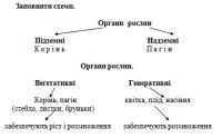 """Розробки уроків з біології 6 кл. до теми """"Рослини"""" (1-5 уроки)"""