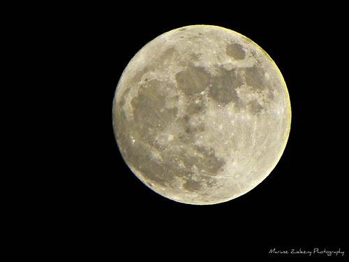 4.27.2010 Moon , Chicago