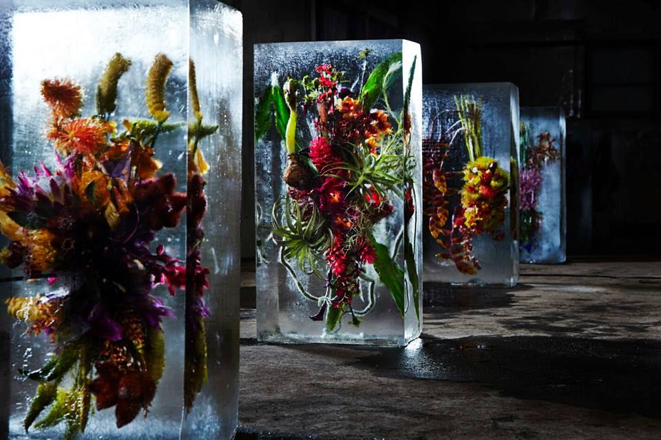 iced-flowers-makoto-azuma (3)