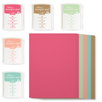 2013-2015 In Color A4 Cardstock Classic Stampin' Pads New Color Kit