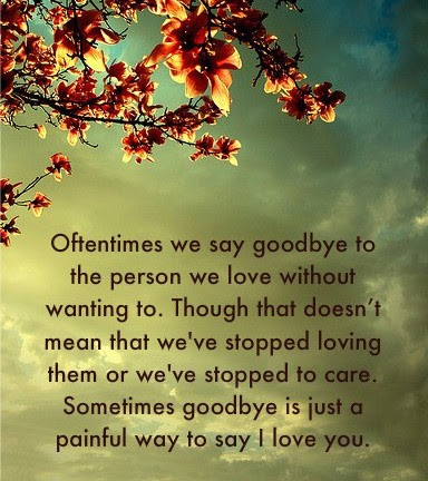 Oftentimes We Say Goodbye To The Person We Love Without Wanting To