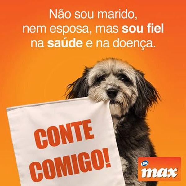 Max – Total Alimentos