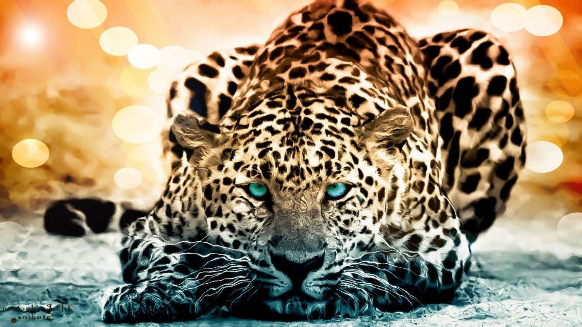 Free Photo Of Jaguar Hd Wallpaper Background Me Pixels