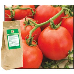 <Font size=5>Tomatoes Alive!<sup>®</font></sup> <Font size=4> Plus 100% All-Natural Fertilizer</font>
