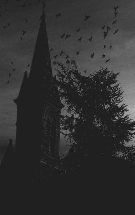 Night has come. The moon is rising. The shadows are moving. The birds have come out to play And so have The Dead. The Dead Game