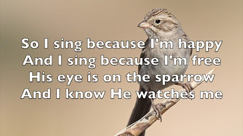 Lyrics To His Eye Is On The Sparrow By Selah