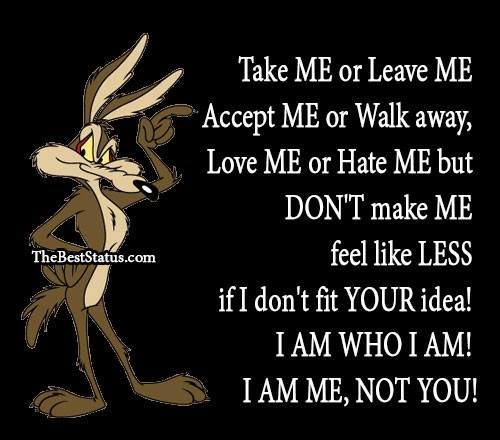 Quotes About Accept Me 170 Quotes