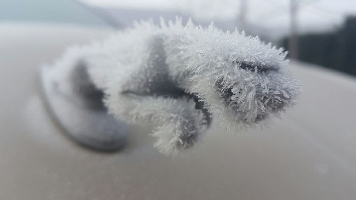 My Jaguar Hood Ornament Has Ice Fur