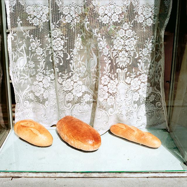 vitrines6