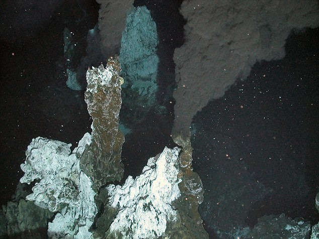 The 'black smoker' vents on the sea floor: The creatures were found on top of undersea volcanoes called hydrothermal vents, which pump out plumes of black smoke causing temperatures to rise to 380C - hot enough to melt lead