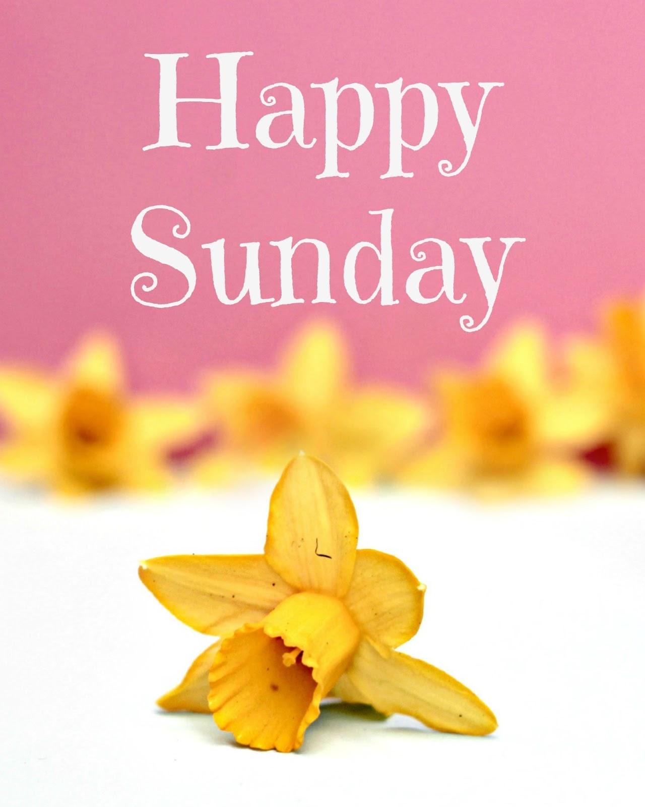 Happy Sunday Quotes Pictures Facebook. QuotesGram
