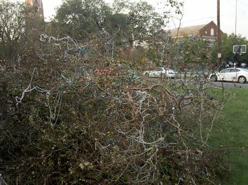 Bead tree down