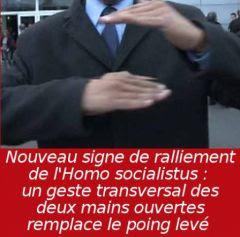 homosocialistus_nouveaugeste.jpg