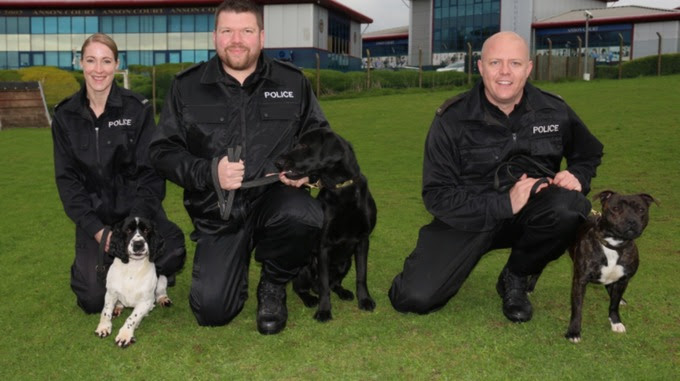 Barry, Archie and Cooper with their handlers