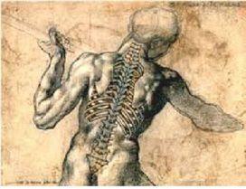 Colonna vertebrale, la nostra tastiera