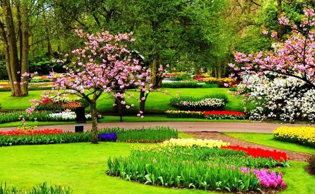 40+ Gambar Bunga Dan Pemandangan Yang Indah, Info Baru!