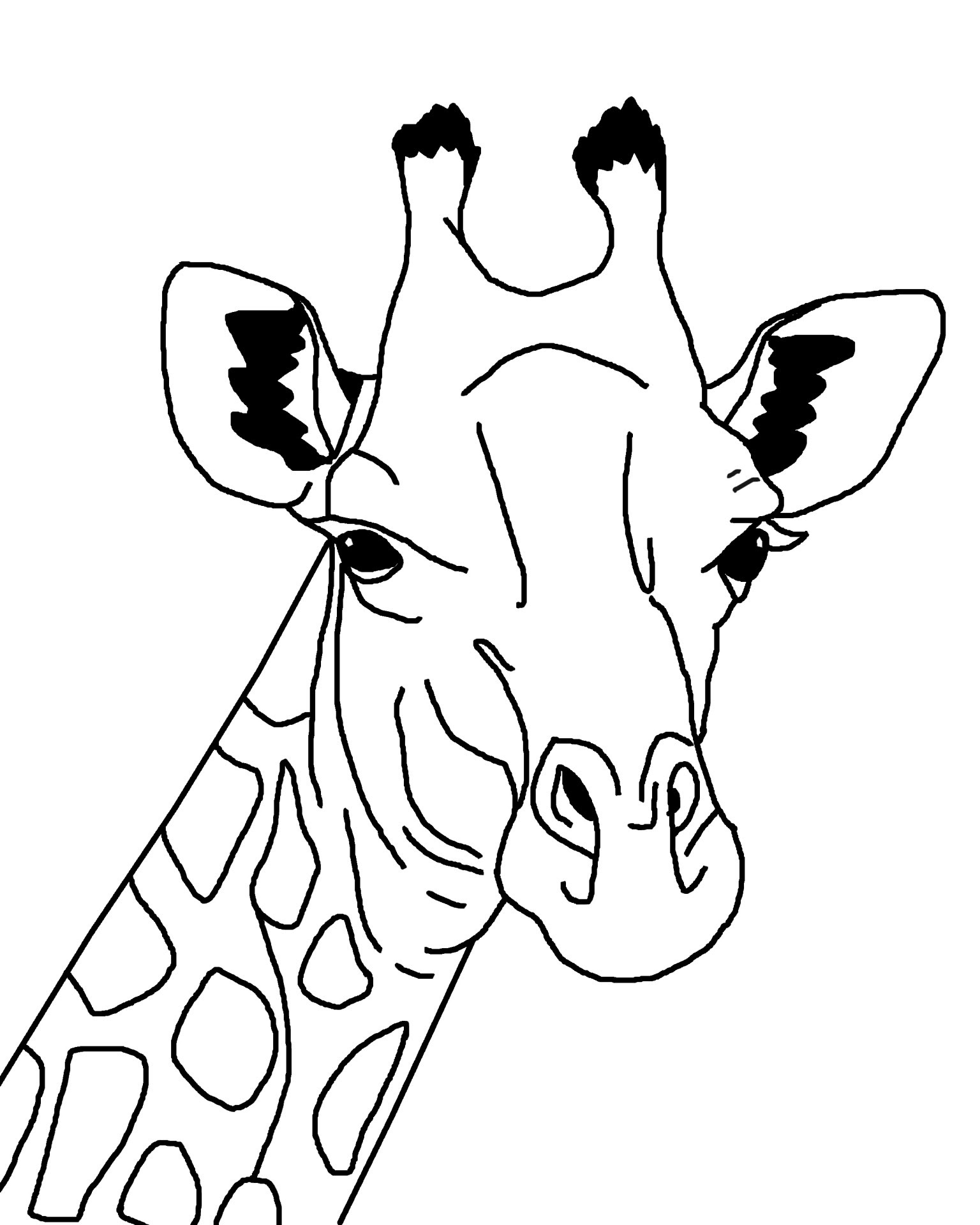 Giraffes - Free Coloring Pages
