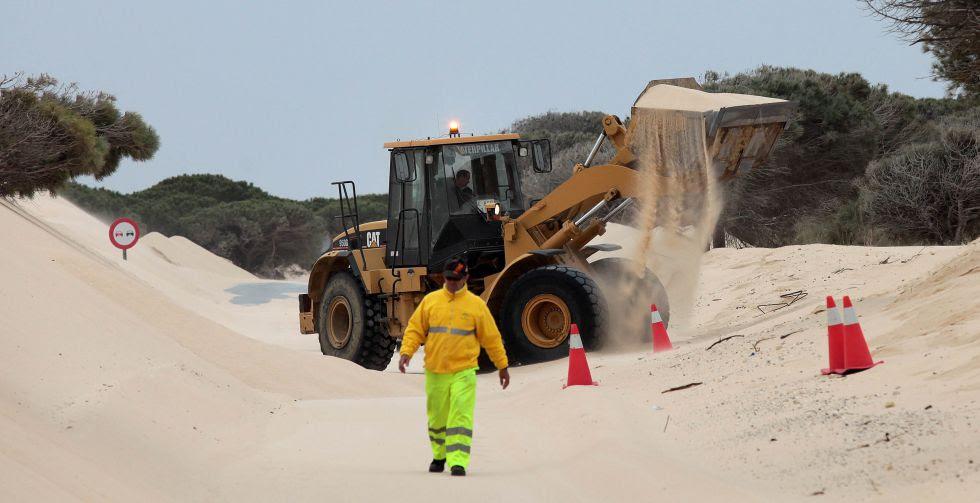Retirada de arena de la duna de Valdevaqueros (Tarifa) en 2012.