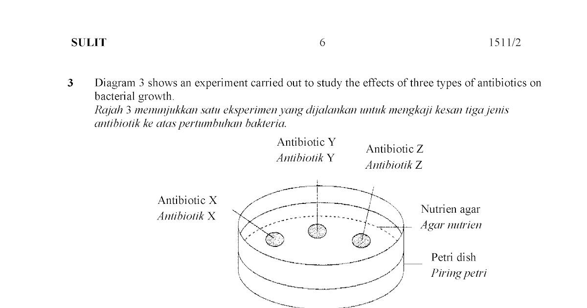 Contoh Soalan Objektif Sains Tingkatan 2 - Contoh PP