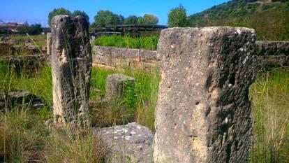 Le erbacce invadono l'area di Parmenide