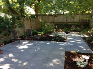 Japanese Maples Archives Landscape Design In A Day