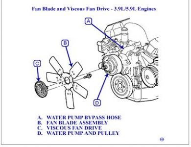 2000 Dodge Dakota V8 Engine Diagram Wiring Diagram Change Limit Change Limit Cfcarsnoleggio It