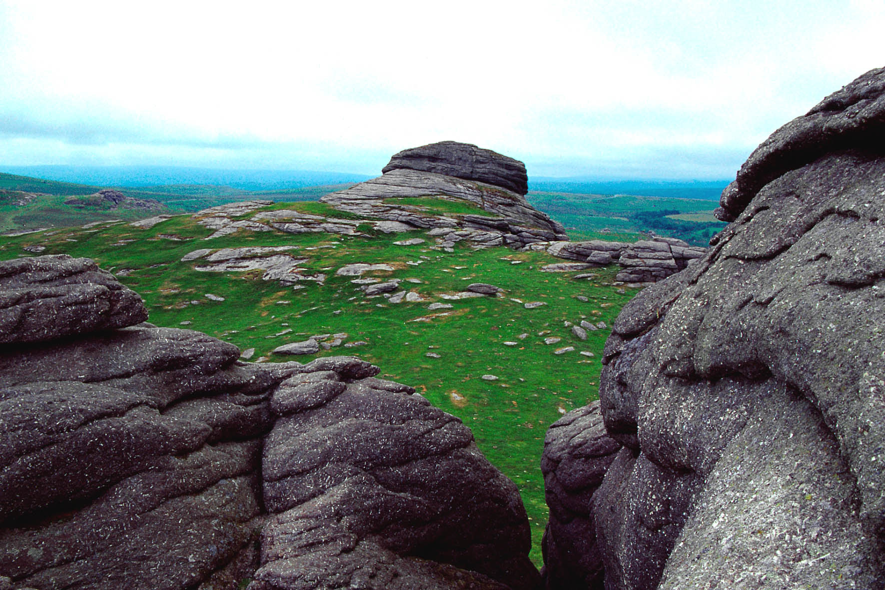 http://upload.wikimedia.org/wikipedia/commons/f/f3/Dartmoor_b.jpg