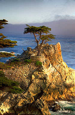 pebble beach california wikipedia the free encyclopedia pebble beach 250x381