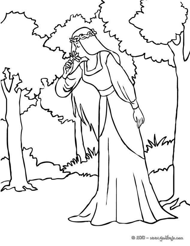Dibujos Para Colorear Una Hada Luna En Un Bosque Eshellokidscom