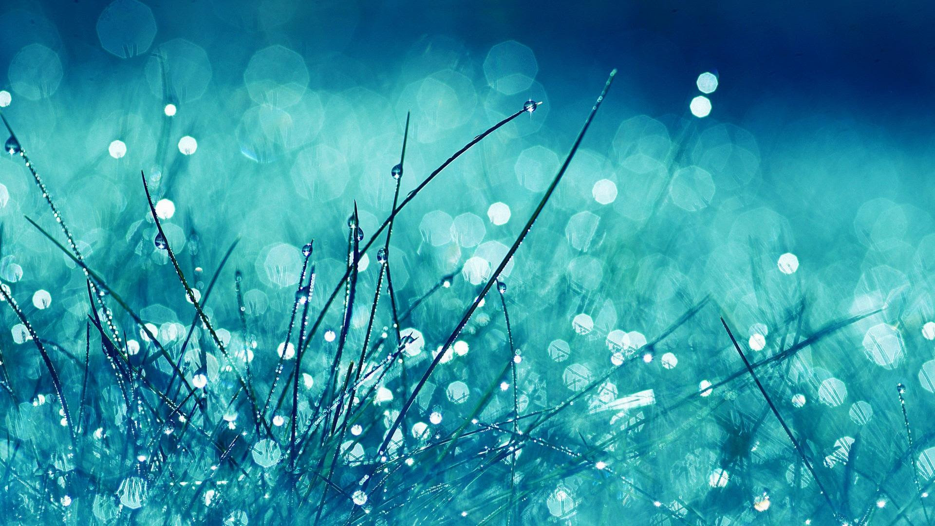 Free Glitter Wallpaper 37 Pictures