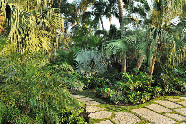 Tropical Landscape by Craig Reynolds Landscape Architecture