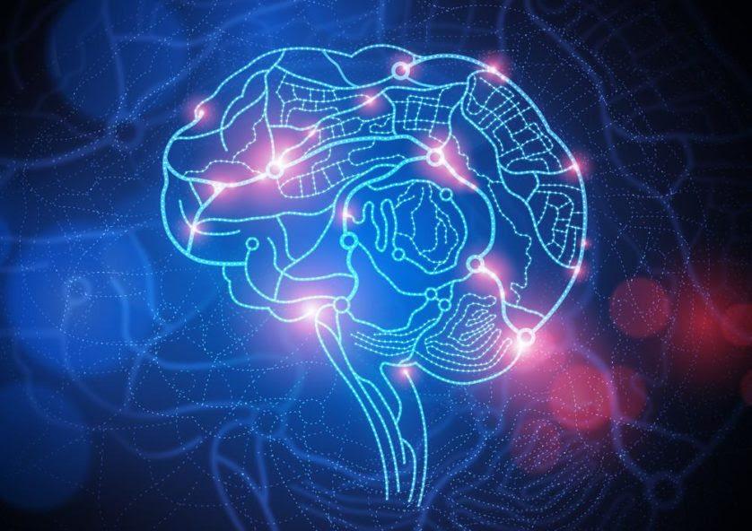 sinapses cerebro alzheimer