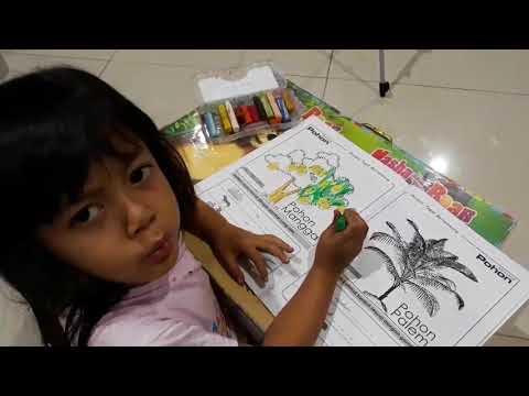 Video Cara Putri Dila Mewarnai Gambar Pohon Mangga Belajar